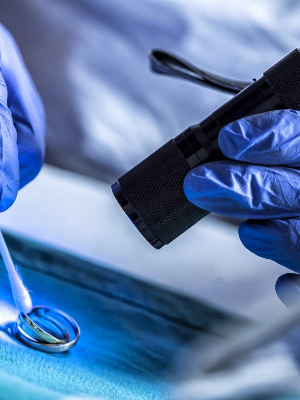 Crime technician examines rings from a crime scene with ultraviolet light in the laboratory,